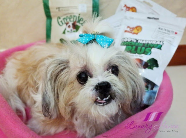 shih tze petlovers vitacost dog treats review