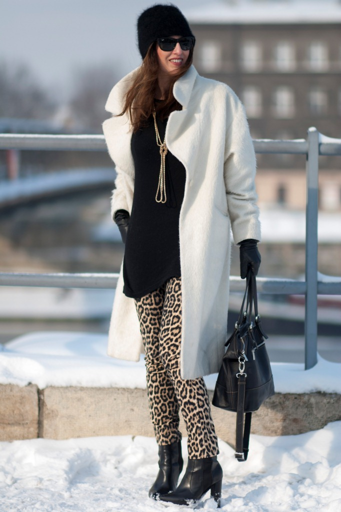 Leopard and Snow