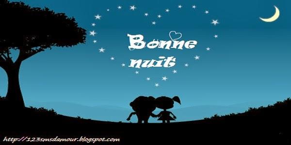 sms bonne nuit mon amour   Amourissima - Mots d\'amour -SMS d\'amour