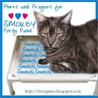 PURRS FOR SMOKEY