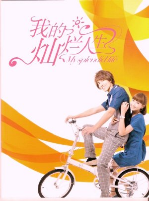 Cuộc Sống Tươi Đẹp Của Tôi VIETSUB - My Splendid Life (2011) VIETSUB - (31/38)