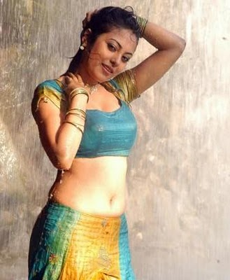 meenakshi hot pictures, meenakshi Sexy pictures, hot bollywood, south ...