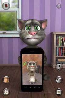 nói chuyện với mèo tom