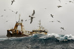 Fishing Boat in Rough Seas