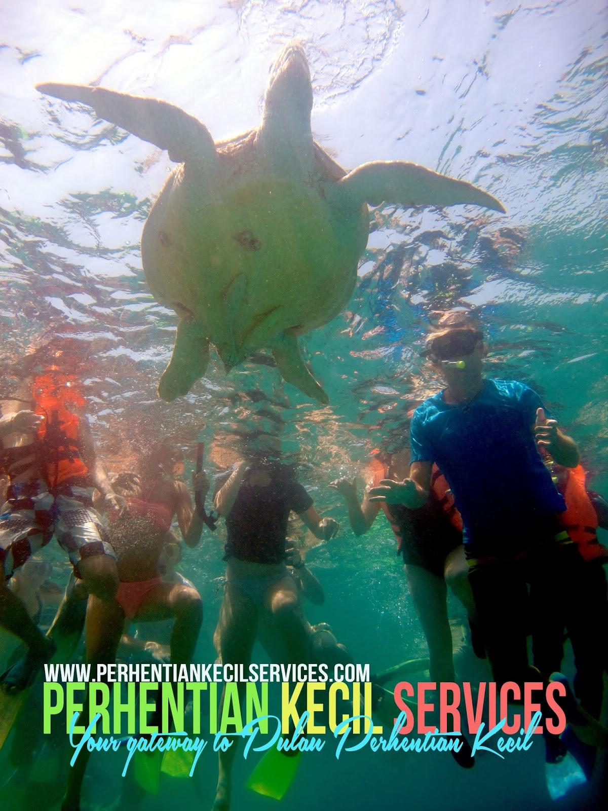 Pakej snorkeling pulau perhentian, pakej percutian perhentian 2014, pakej bajet pulau perhentian, pakej murah pulau, pakej pulau malaysia