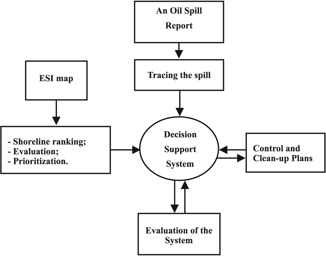 information system and decision support system Decision support systems also help managers negotiate across organizational units by standardizing the mechanics of the process and by providing a common conceptual basis for decision making.