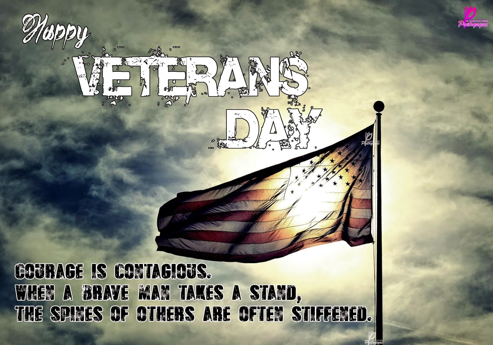 Veterans Day Quotes From Veterans Quotes For Veteran Day
