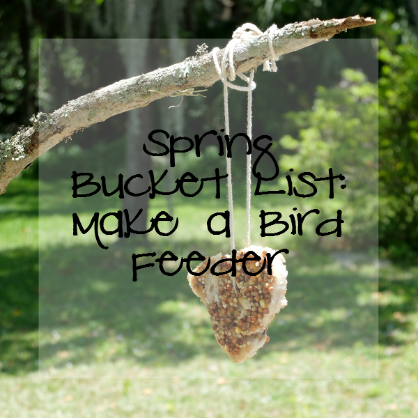 Sweet Turtle Soup: Spring Bucket List - Make a Bird Feeder