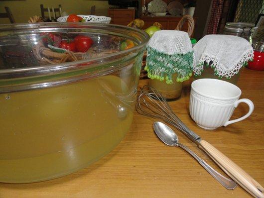 Ginger Beer Recipe - Rhonda Hetzel