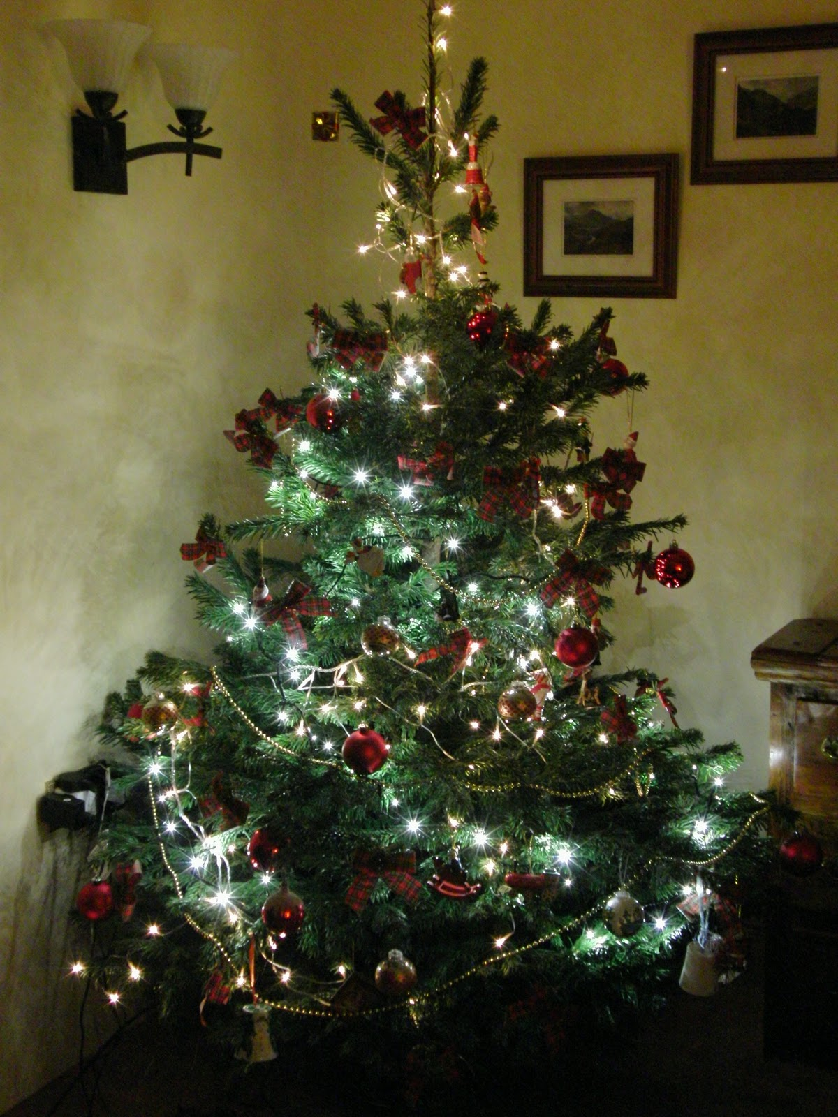 decorated christmas trees - photo #3