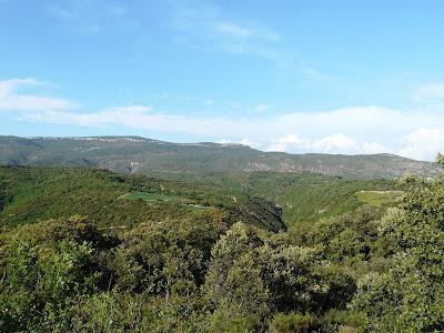 BARRANCO DE MODOVIL (ALBERUELA DE LALIENA)