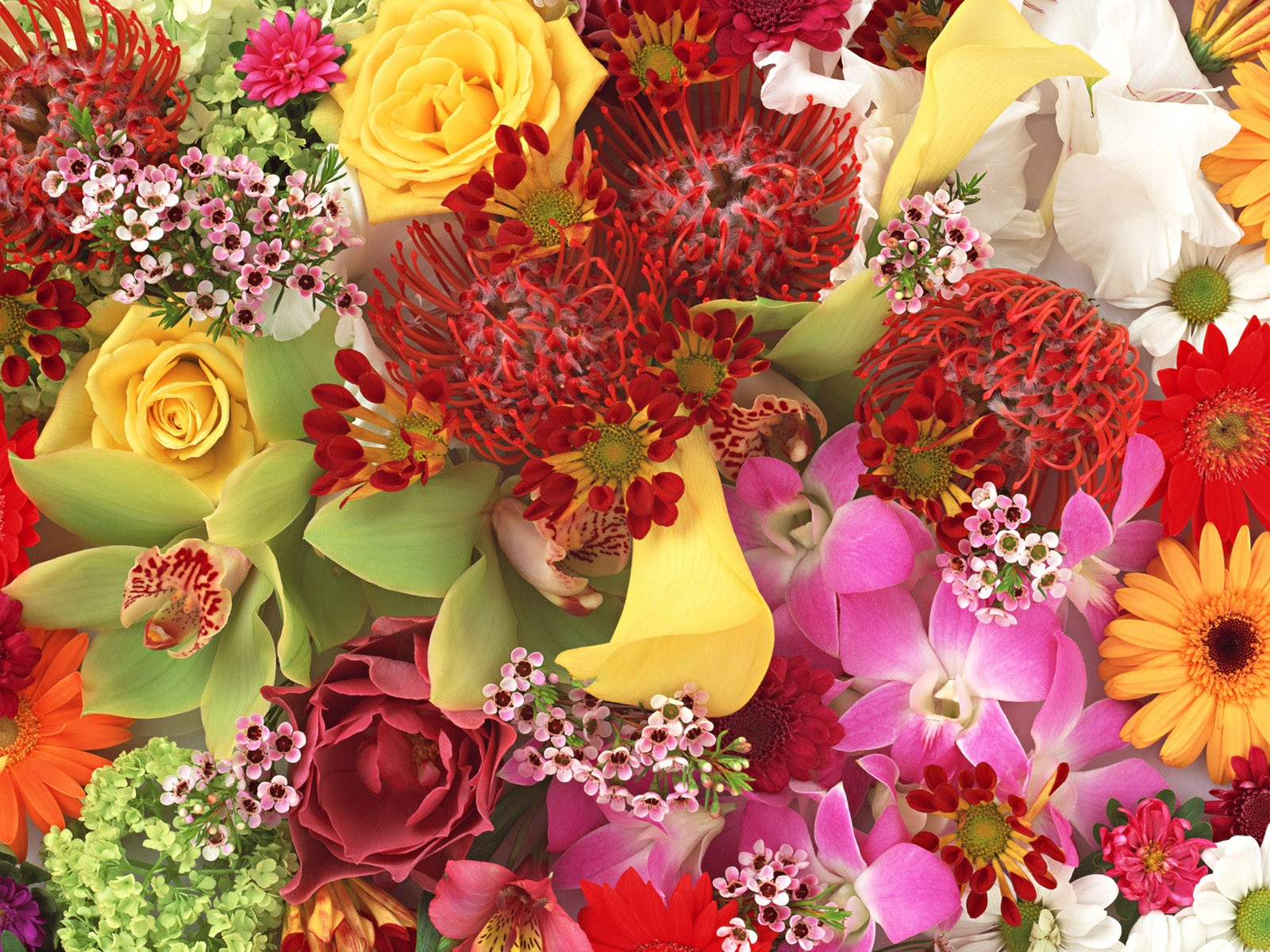 Flower bouquet colorful bouquet rose bouquet for Picture of a bouquet of flowers