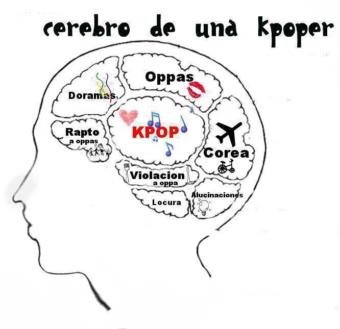 Memes con Super Junior xD Cerebro