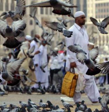 Hak Jamaah Haji di Mekah