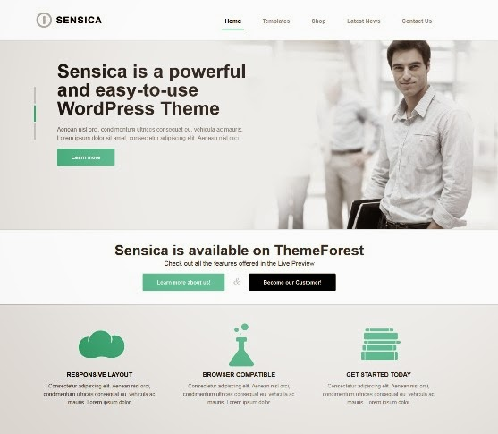 Sensica Responsive WordPress Theme