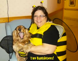 Lucy and me on Halloween - matching Bumblebees!