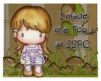 I made Top #3 on SSPC#01