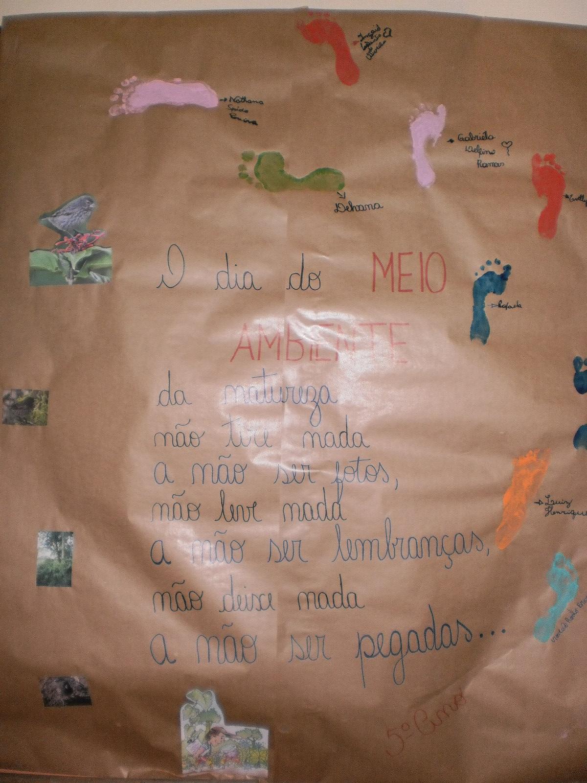 Escola afonso bedinot cartaz sobre preserva o do meio for Mural sobre o meio ambiente