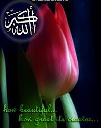 Thanks Allah...