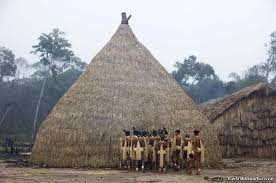 Tribal House in Amazon river forest