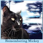 Remembering Mickey