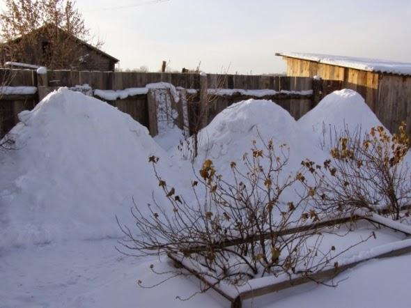 Зимовка пчел в Тюменьской области
