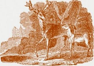 Il cerbiatto e il cuore del cane (Fedro)