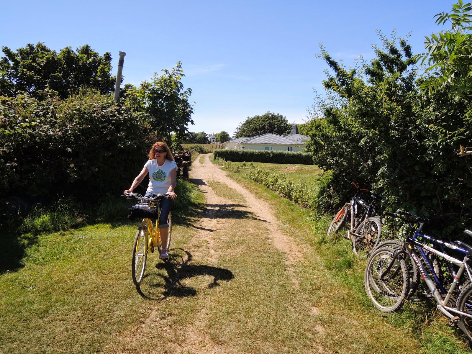 bikes, Marla Gentry, Sark