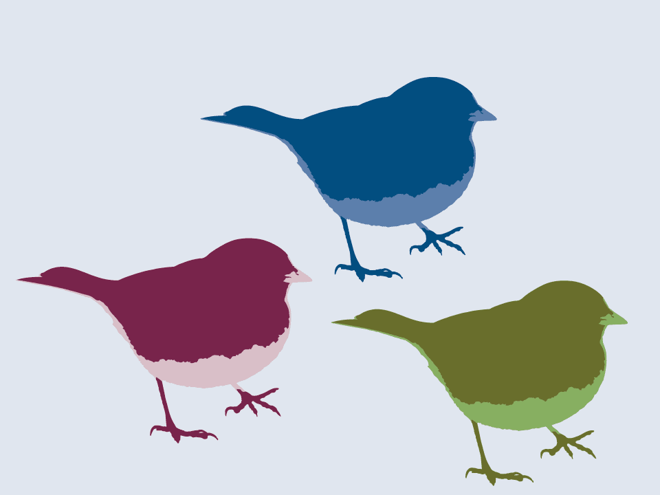 Three Birds in Illustrator