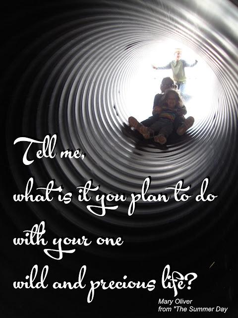 https://www.loc.gov/poetry/180/133.html