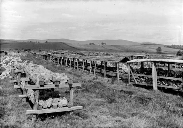 Black Moss, 2.4 km. north of Dinnet Station. Aberdeenshire. Processing the kieselguhr (diatomite). Drying in open-sided covered sheds. A close-up of the second process in the method of drying the kieselguhr. The cut blocks are clearly seen in rows of low open sheds. On the left blocks are placed on an uncovered low wooden structure with the blocks of the first drying process on the ground behind.