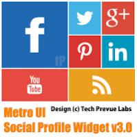 Widget Share Metro Style