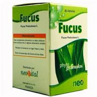 Fucus emagrece
