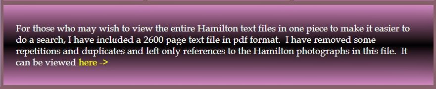 textoalternativo