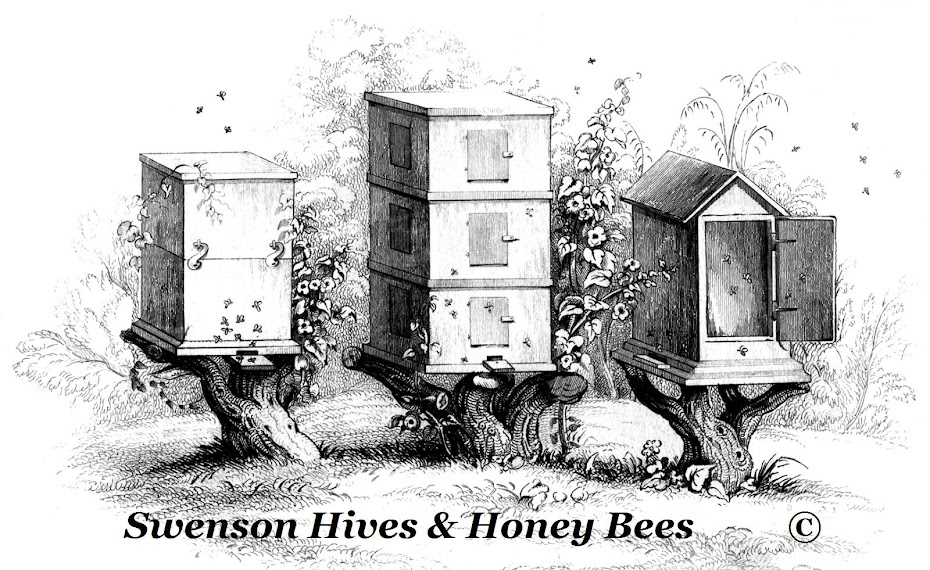 Swenson Hives & Honey Bees