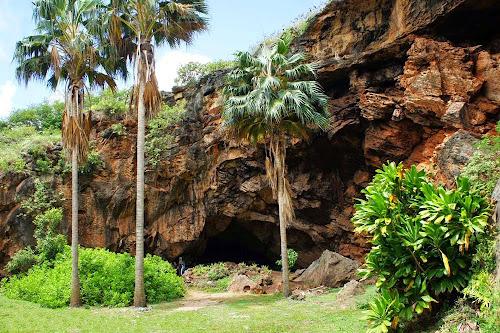 Makauwahi cave - Havai
