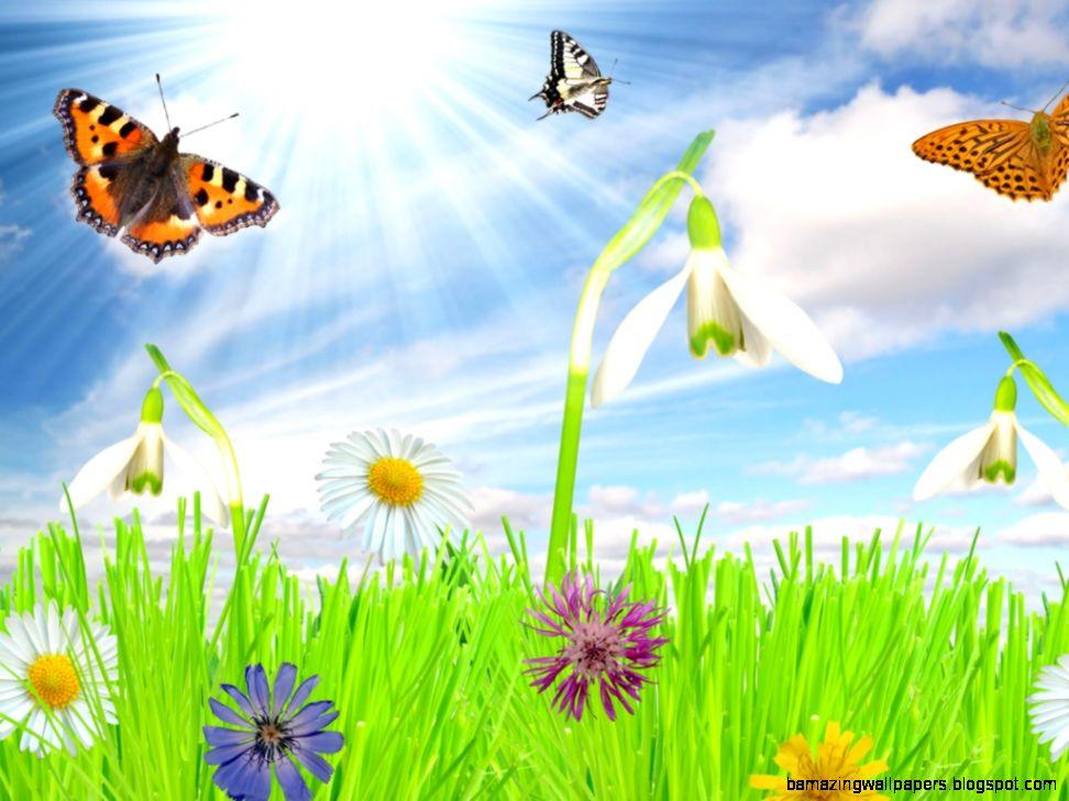 Free Spring Wallpaper 1280 X 1024