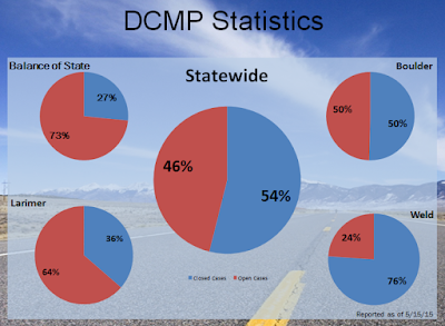 graphic showing Disaster Case Management Program Statistics
