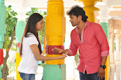 Nenu Naa Premakatha Movie Photos Gallery-thumbnail-4