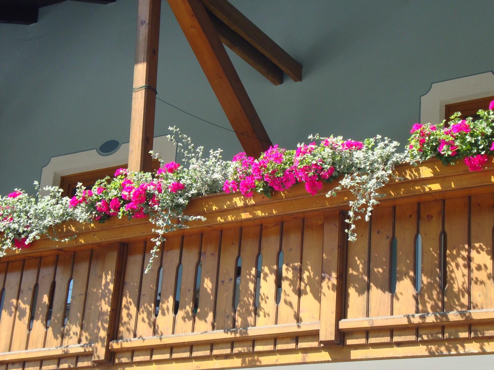 Vaso Esterno Grigio : Un piccolo giardino in città: abbinamenti da provare in giardino