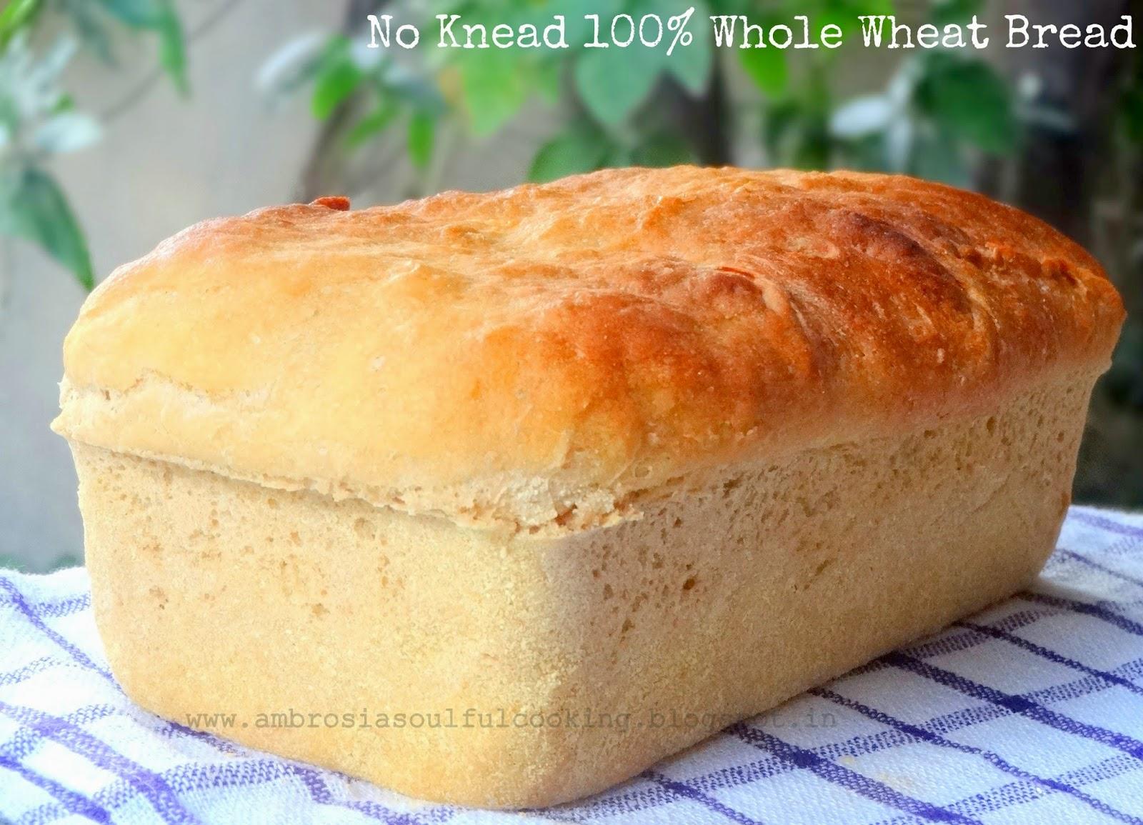 AMBROSIA: No Knead 100% Whole Wheat Bread