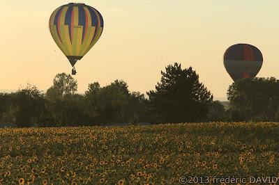 campagne tournesols silhouettes crepuscule ballons montgolfières chambley mondial air ballon 2013 Lorraine