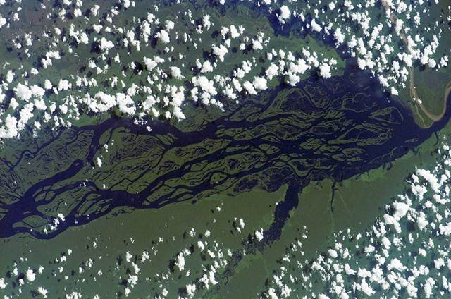 gambar-satelit-rio-negro-amazon-brazil