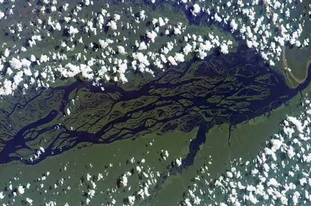 gambar-satelit-rio-negro-amazon-brazil