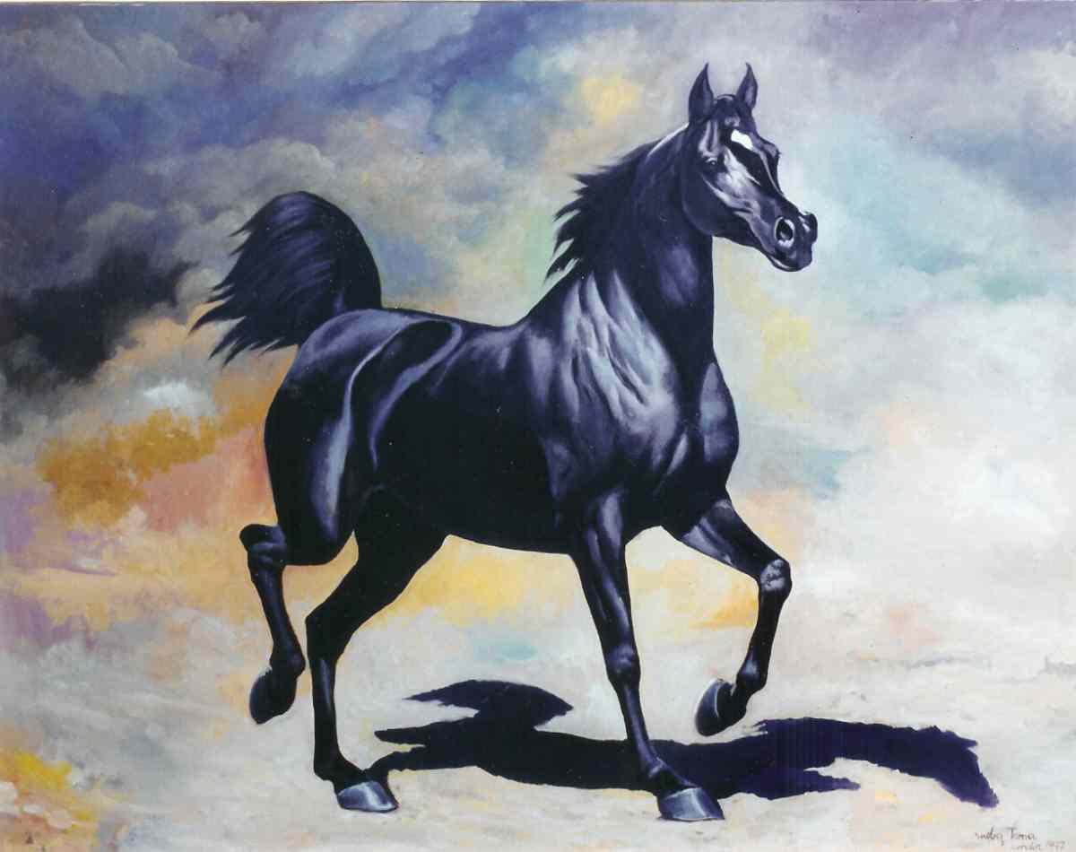 Amazing   Wallpaper Horse Watercolor - arab-black-horse  Perfect Image Reference_236013.jpg