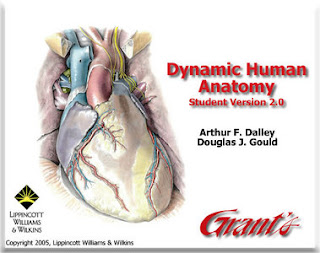 Dynamic Human Anatomy