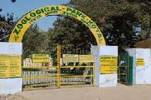 Zoo in Kota