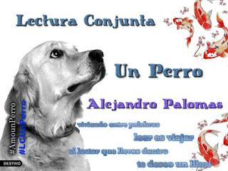 http://viajagraciasaloslibros.blogspot.com.es/2016/01/sorteo-y-lectura-conjunta-un-perro.html