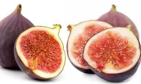 Gambar khasiat buah ara sebagai sumber kalsium penting untuk tulang