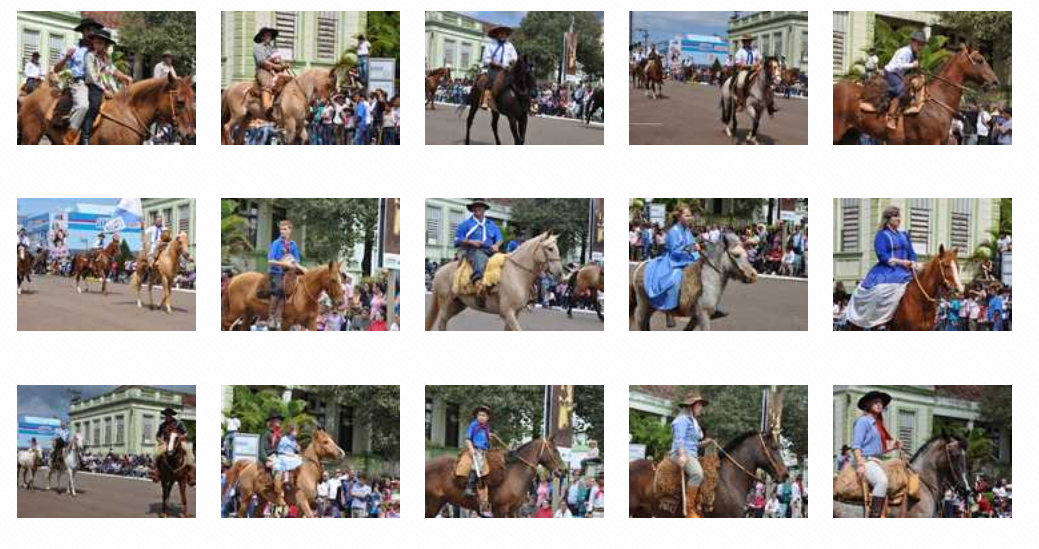 http://www.ijui.com/cultura/67459-orgulho-de-gaucho-retratado-no-desfile-farroupilha-em-ijui-veja-imagens.html